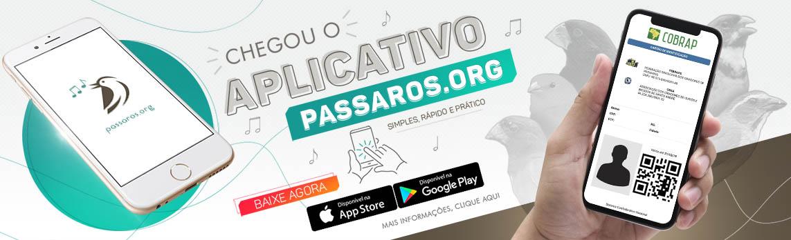 APP Pássaros.org
